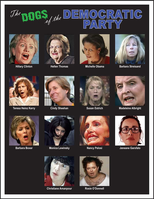ugly liberal women