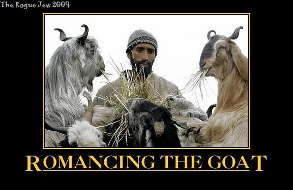 image_goats.jpg