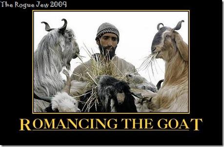 Romancing The Goat